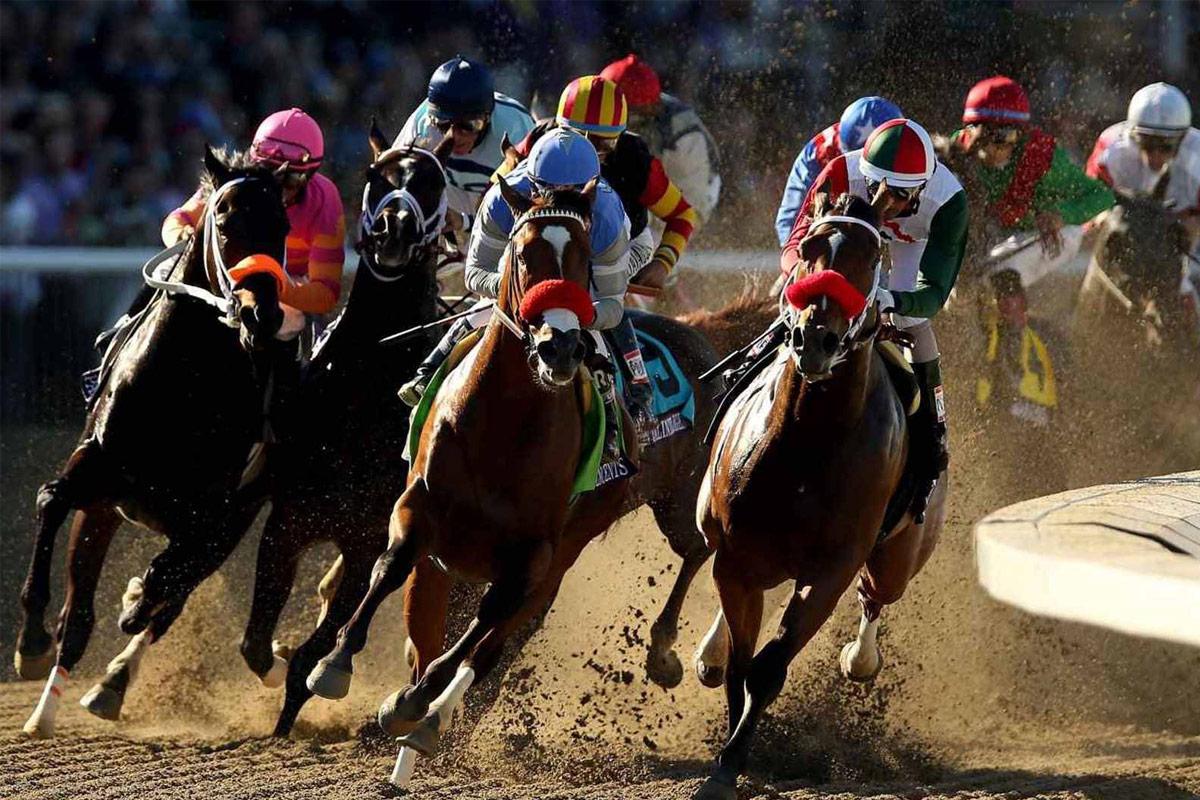 horses and jockeys racing