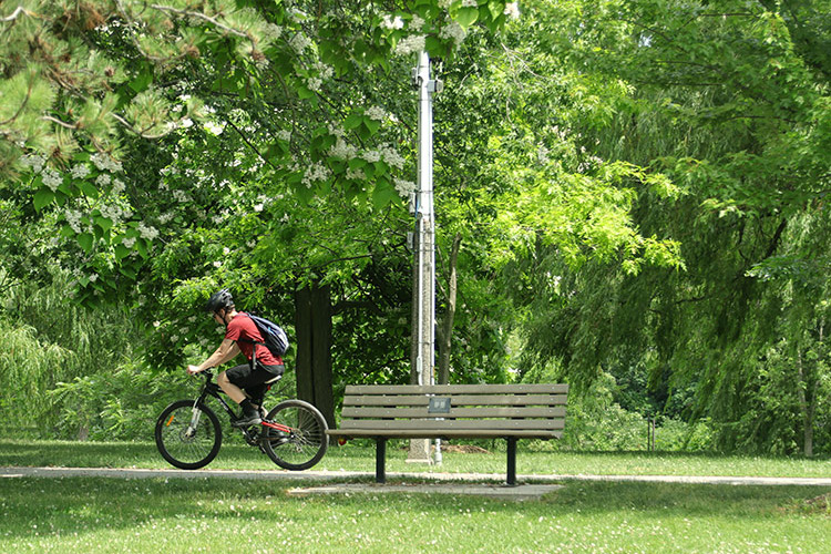 man riding bicyle in park past bench